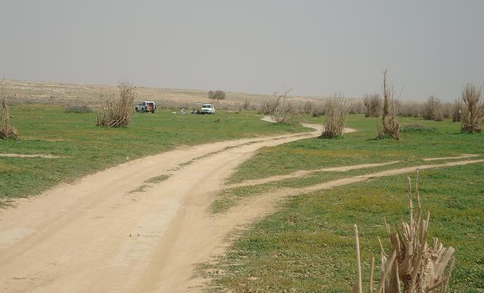 بالصور اسماء هجر ومناطق وقرى قبيلة مطير بالتفصيل مع ذكر الفخذ التابعة لها ومكانها 79 2